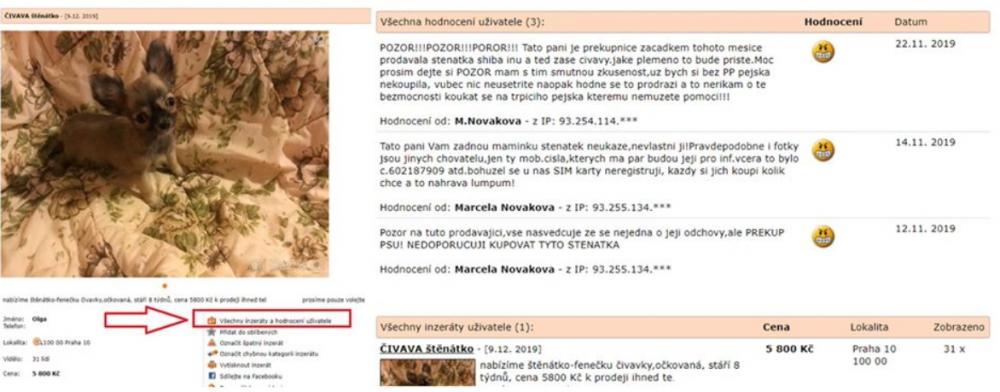 Návod, jak nakupovat psa na bazos.cz