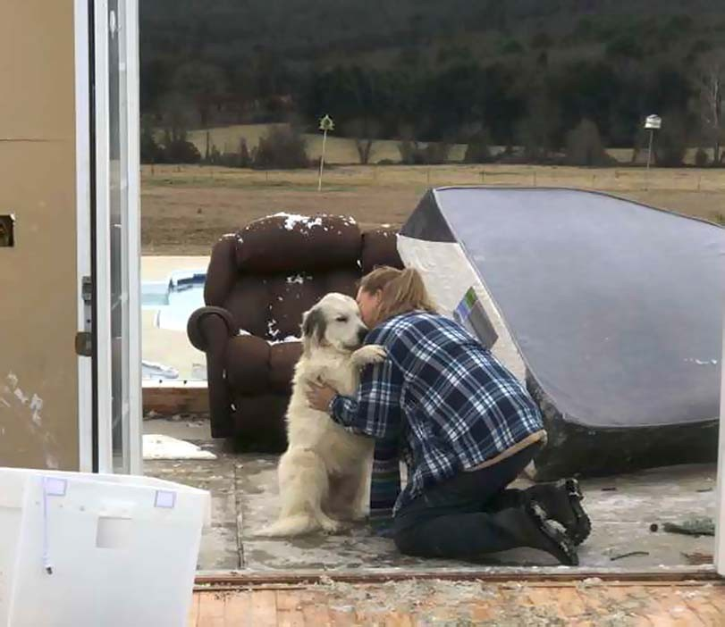 Objetí ženy a psa, pes