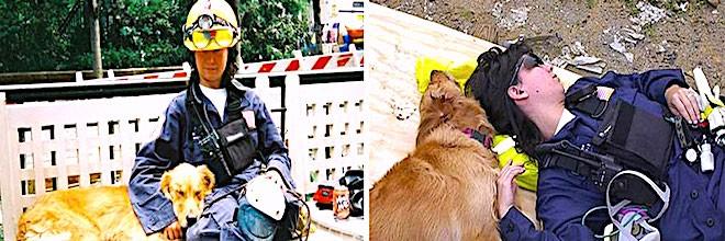 Poslední přeživší (z 11. 9. 2001) psí záchranář oslavil své 16. narozeniny, vítala ho stovka lidí