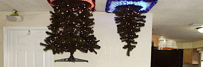 15+ geniálních lidí, kteří přišli na to, jak ochránit vánoční stromeček před jejich psy
