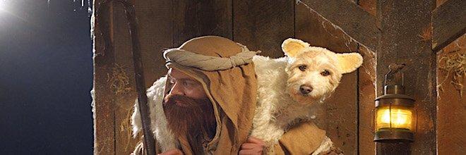 Každé Vánoce promění svého psa v jiné zvíře ツ